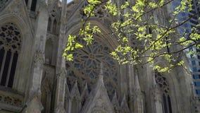 圣帕特里克大教堂在纽约 影视素材