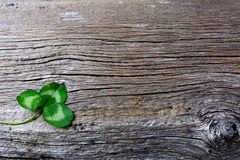 圣帕特里克天与三叶子三叶草爱尔兰人fes的贺卡 库存照片