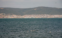 圣弗拉斯海岸镇  黑色保加利亚覆盖空白海运的通知 免版税库存照片
