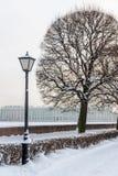 圣彼得堡地标Vasilievsky海岛唾液 库存图片