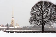 圣彼得堡彼得保罗堡垒 库存图片