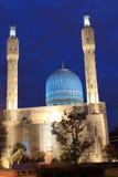 圣彼得堡清真寺 免版税库存图片
