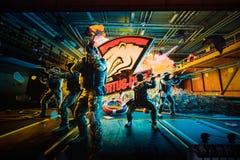 圣彼得堡,俄罗斯- 2017年10月29日:震央柜台罢工:全球性进攻网络体育比赛 队virtus 免版税库存图片