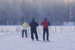 圣彼得堡,俄罗斯2015年1月06日:滑雪在冬天森林里的人们 库存照片