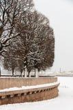 圣彼得堡Vasilievsky海岛唾液 免版税库存图片