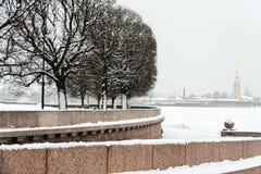 圣彼得堡Vasilievsky海岛唾液 免版税库存照片