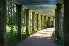 圣彼德堡凯瑟琳公园柱廊 免版税库存照片