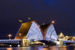 圣彼德堡吊桥  库存照片