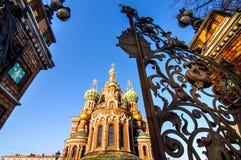 圣彼德堡的吸引力 库存图片