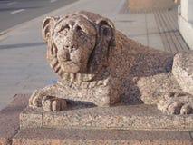 圣彼德堡,一头石狮子的图 库存照片