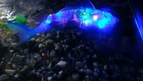 圣彼德堡,俄罗斯- 2018年11月12日:鱼有电灯泡的靠机械装置维持生命的人机器人在一个水族馆的游泳里面在水中 股票视频