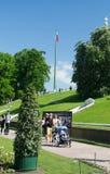 圣彼德堡,俄罗斯- 2016年6月03日:在Peterhof的俄国旗子 免版税库存照片