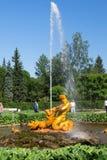 圣彼德堡,俄罗斯- 2016年6月03日:Peterhof,喷泉 免版税库存照片