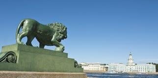 圣彼德堡,狮子雕塑  免版税库存照片