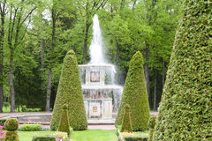 圣彼德堡, RUSSIA-JUNE 03日2017年 喷泉在Petrodvorets公园  免版税库存图片