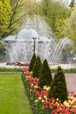圣彼德堡, RUSSIA-JUNE 03日2017年 喷泉在Petrodvorets公园  库存照片