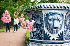 圣彼德堡 俄国 装饰花瓶在夏天庭院里 免版税图库摄影