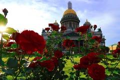 圣彼德堡 大教堂isaac s圣徒 夏天、大教堂和花 库存照片