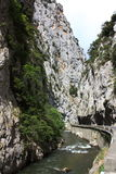 圣徒乔治峡谷的河在比利牛斯,法国 库存照片