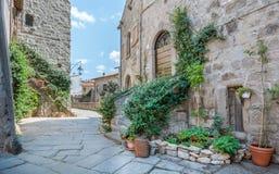 圣徒佩莱格里诺区在维泰博,拉齐奥意大利 免版税库存图片