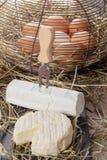 圣徒马塞兰法国乳酪用在秸杆的鸡蛋 图库摄影