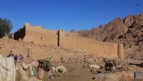 圣徒Catherines修道院。西奈半岛。埃及 影视素材