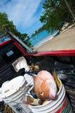 圣托马斯,美国维尔京群岛新鲜的抓住 图库摄影