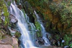 圣拉蒙瀑布, Boquete,奇里基省,巴拿马 免版税图库摄影