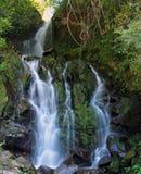 圣拉蒙瀑布, Boquete,奇里基省,巴拿马 免版税库存图片