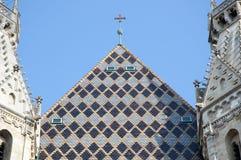 圣斯蒂芬的大教堂,维也纳,奥地利屋顶  免版税图库摄影