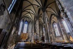圣斯蒂芬` s大教堂在维也纳 库存照片