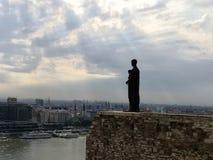 圣母玛丽亚雕象布达佩斯匈牙利 免版税库存图片