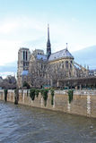 巴黎圣母院南部的门面  法国巴黎 免版税库存照片