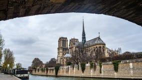 巴黎圣母院和河塞纳河看法  免版税库存照片
