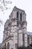 巴黎圣母院在一个冬日 免版税库存照片