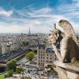 从巴黎圣母院屋顶的面貌古怪的人和城市景色  库存照片