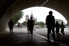 巴黎圣母院看法从画廊的 图库摄影