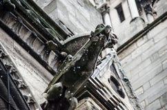 巴黎圣母院面貌古怪的人在雨中 图库摄影