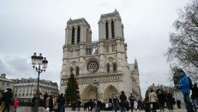 巴黎圣母院(亦称大教堂巴黎圣母院)有装饰的杉木树的, 影视素材