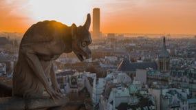 巴黎圣母院Gorgoyle  免版税库存图片