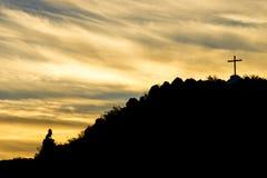 圣泽维尔狮子 图库摄影