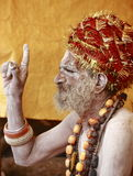 圣洁印度人纳卡人sadhu 免版税库存照片