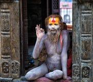 圣洁者sadhu 免版税库存图片