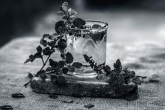 圣洁蓬蒿、tulsi或者罗勒属tenuiflorum水在一块透明玻璃 库存照片
