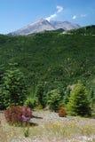 圣海伦山,华盛顿,美国 免版税库存照片