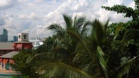 圣淘沙海岛,新加坡 股票录像