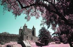 圣玛丽亚da费拉的城堡 免版税库存图片