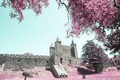 圣玛丽亚da费拉的城堡 图库摄影