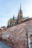 圣皮特圣徒・彼得和保罗布尔诺,捷克大教堂  免版税库存照片