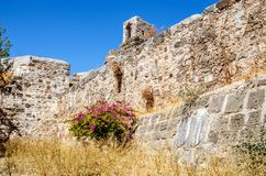 圣皮特圣徒・彼得城堡的坚不可摧的石墙在博德鲁姆 在墙壁下的地面长满了与草,干  库存照片